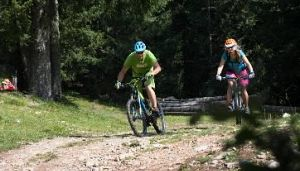 Trail Enduro Easy